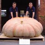 2008 Ian & Stuart Paton - 1,457 - European Record