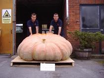 2008 Ian & Stuart Paton - 1,457 - United Kingdom