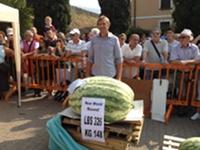 2012 Gabriele Bartoli - 326 & 307.77