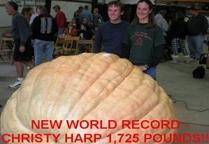 1725 Christy Harp 2009